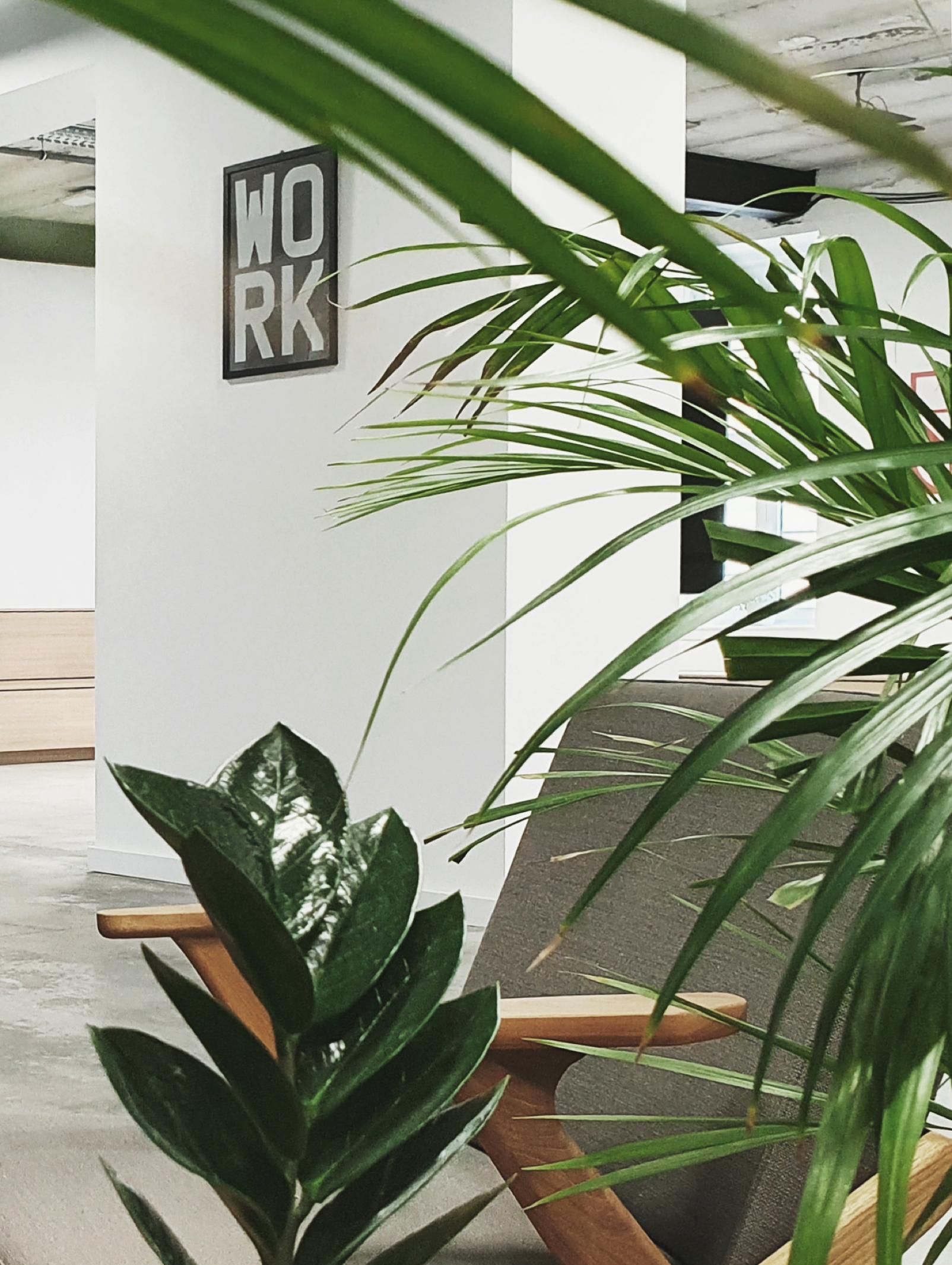 belgrade office